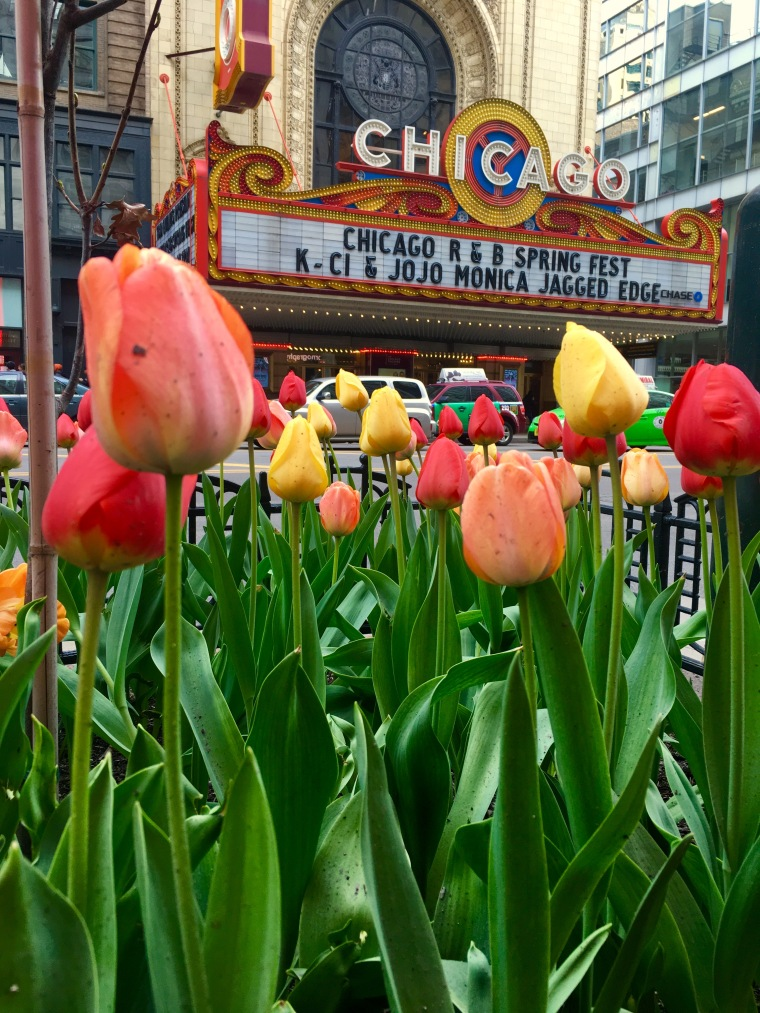 ChicagoFlowers